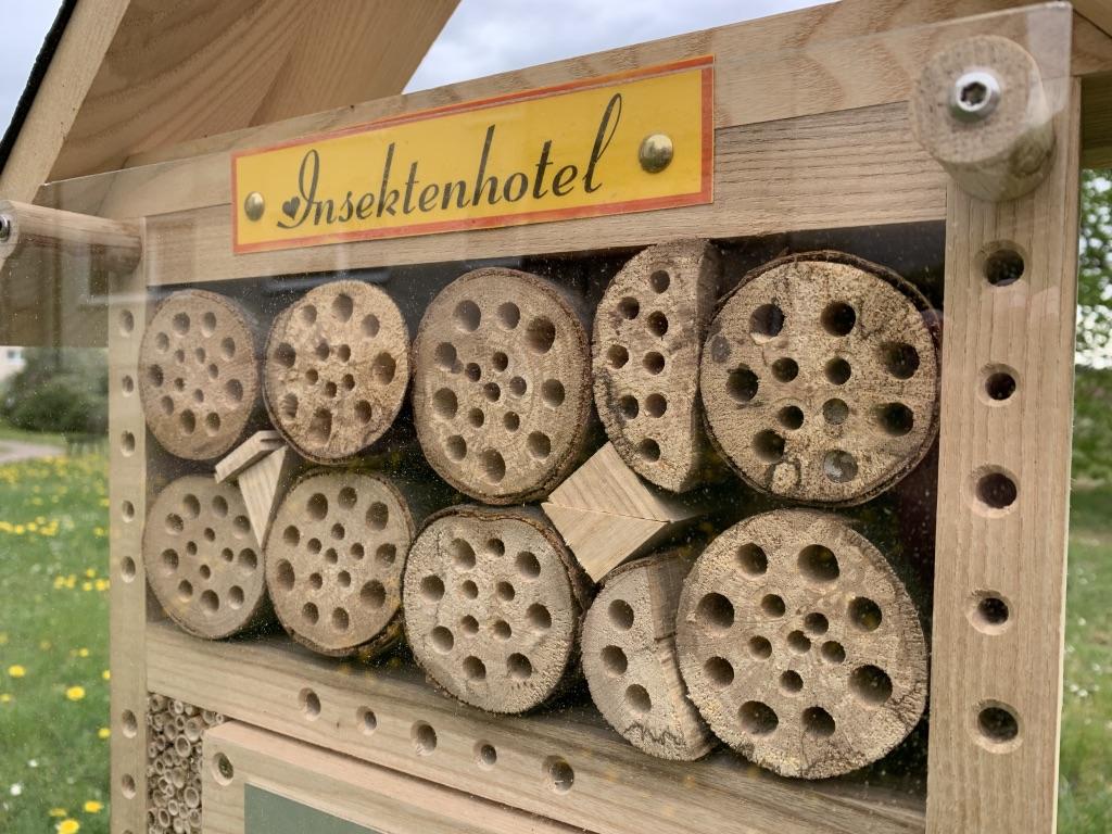 Detailaufnahme des Insektenhotels - die ersten Löcher sind bereits bewohnt.