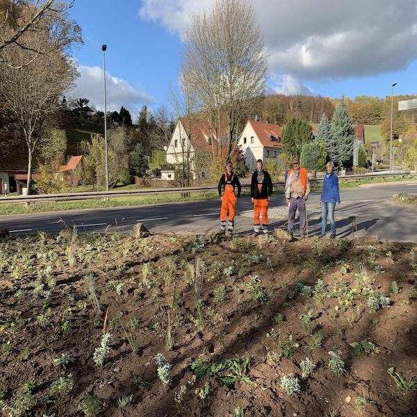 Das Team der Pflanzaktion steht hinter der fertig bepflanzten Fläche am Radweg in Seebach Richtung Thal.